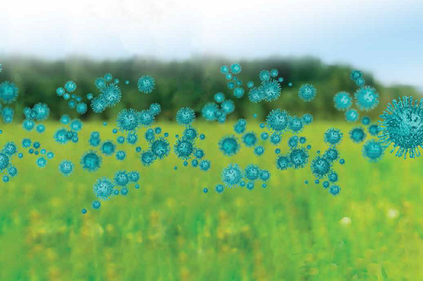 UofT Institute for Global Health Equity & Innovation Seed Grant