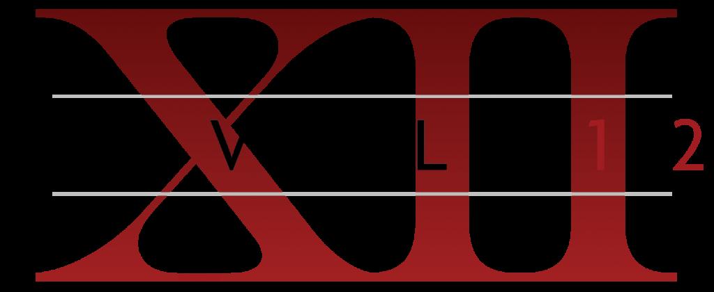 Level 12_Logo