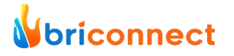 briconnect logo